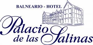 palacio_salinas